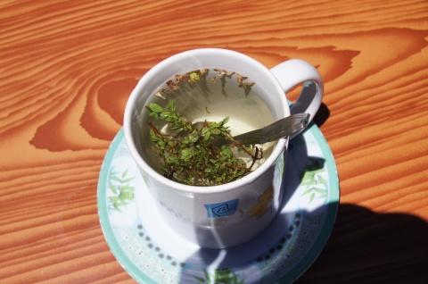 Mint tea at a pit stop